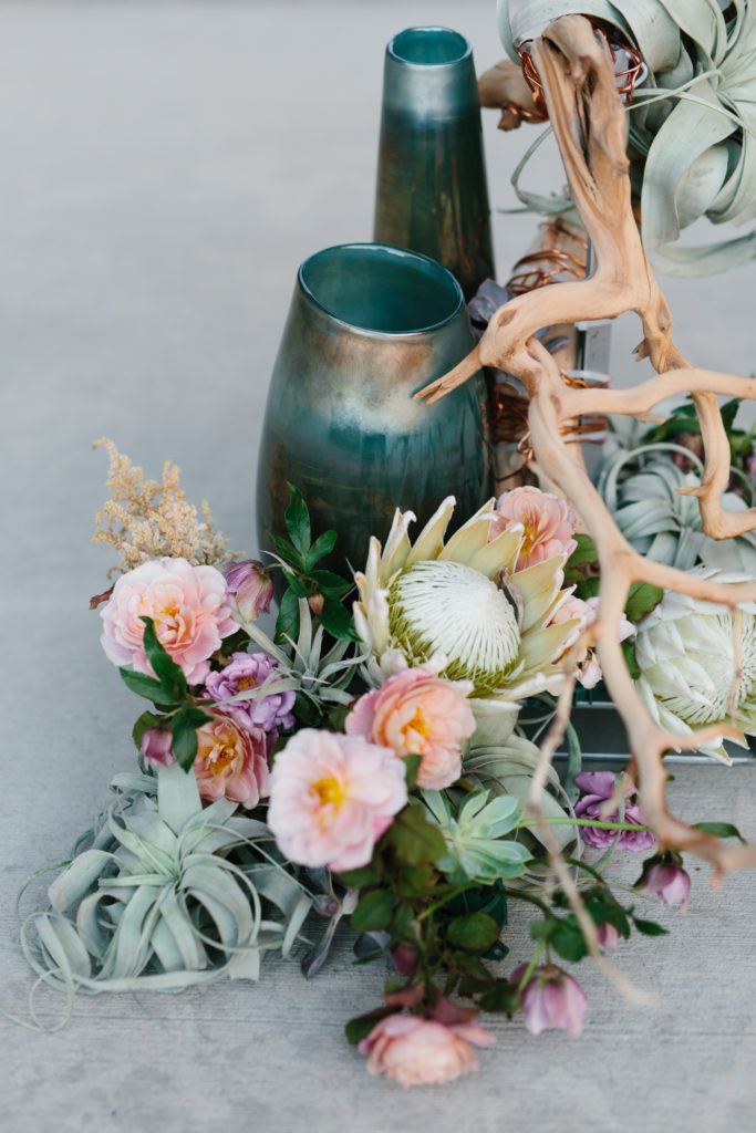 New Zealand Bridal  Company Features  Vivince Natural History Museum Shoot